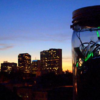 Urban Fireflies